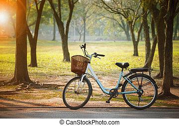 antigas, vindima, bicicleta, em, parque público, com, engergy, salvar, e, verde, ambiental, conceito
