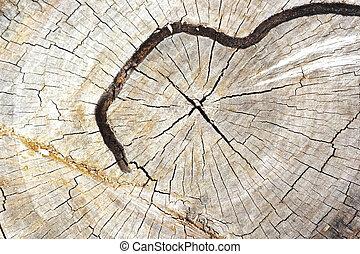 antigas, vindima, -, textura, madeira, fundo