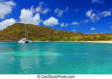 Catamaran anchored of a calm beach in Antigua