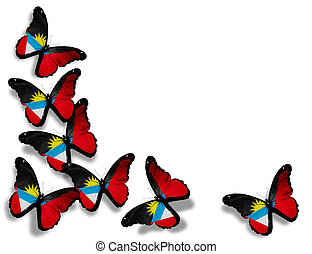Antigua and Barbuda flag butterflies, isolated on white ...