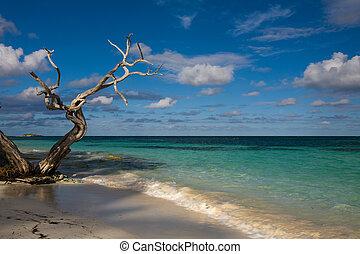 antigua - the beach of antigua, carribean year 2009