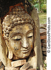 antiguo, budismo, cabeza, en, raíz, de, árbol del banyan,...