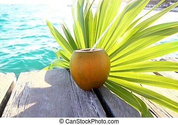 antilles, cocktail, noix coco, arbre, feuille paume