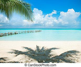 antilles, island., vacances, et, tourisme, concept., soleil, et, paumes