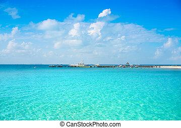 antilles, mujeres, mexique, île, isla, plage
