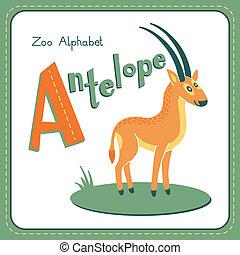 antilop, -, brev