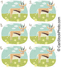 antilope, visuel, jeu