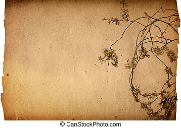 antiquado, flor, artisticos