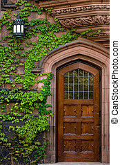 Old wooden door with ivy - detail of Princeton university's building