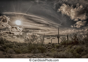 Antique image of the desert - An image of a sunset at...