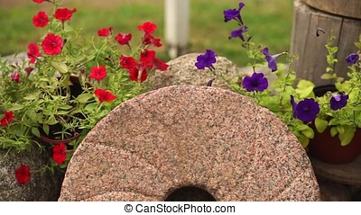 Antique millstone, surrounded by flowers.