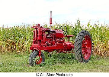 Antique Red Tractor and Corn - Antique red tractor in front...