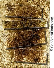 antiquité, feuilles, déchiré, contre, papier, texture, fond, page