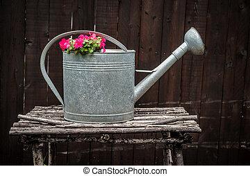 antiquité, fleurs, arrosoire