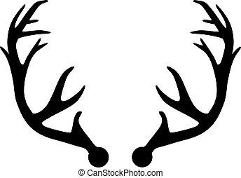 antler, cervo