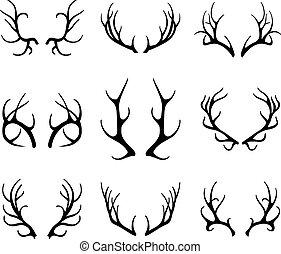 antlers, bianco, vettore, cervo, isolato