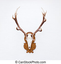 Antlers of a huge stag on white wall.
