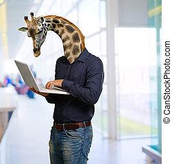 användande, huvud, giraff, laptop, man