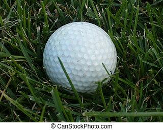 anyone?, ゴルフ
