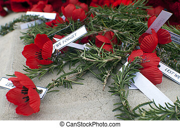 Anzac Day poppies and rosemary - close up view of red...