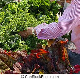 anziano, mercato, coltivatore