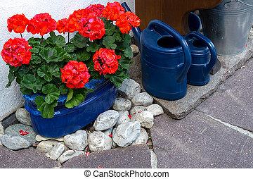 ao redor, área, casa, aguando, potes, geraniums, cans., decorado, vermelho