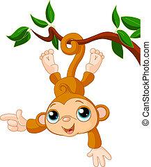 apa, baby, visande, träd