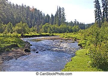 apache, réservation, ruisseau, paradis