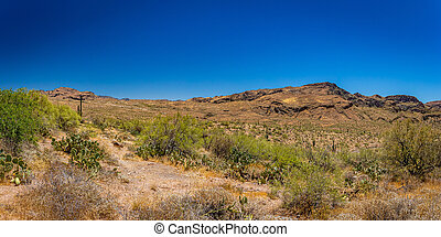 Desert views along Arizona State Route 88, a former stagecoach route known as the Apache Trail.
