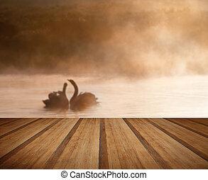 apareado, par, de, cisnes, en, misy, brumoso, asutumn, otoño, lago, conmovedor, escena, con, tablas de madera, piso