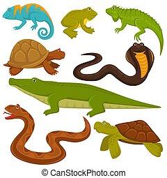 apartamento, animais, ícones, reptilian, camaleão, crocodilo, lagarto, vetorial, répteis, cobra, tartaruga, ou