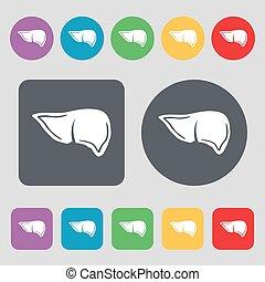 apartamento, buttons., jogo, colorido, ícone, sinal., vetorial, fígado, 12, design.
