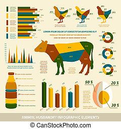 apartamento, elementos, desenho, animal, infographics, ...