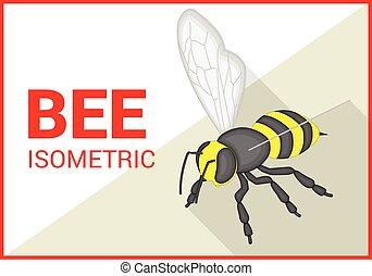 apartamento, isometric, vetorial, abelha, 3d
