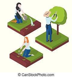 apartamento, jardinagem, agriculture., character., aguando, árvores, cultivando., corte, jardineiro, semeando, colher