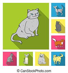 apartamento, jogo, illustration., ícones, animal estimação, símbolo, raças, cobrança, gato, gatos, teia, design., bitmap, estoque