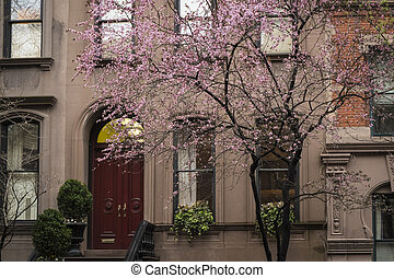 Apartment building, Manhattan, New York City