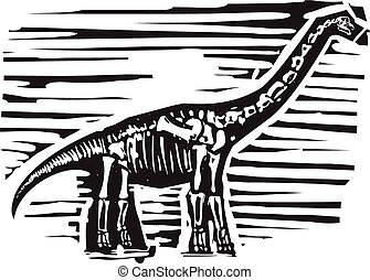 Apatosaurus Fossil - Woodcut style image of a fossil of a...
