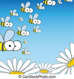 ape, e, daisy., primavera, fondo.