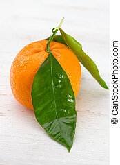 apelsin, vit fond