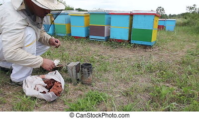 Apiarist, beekeeper prepare the smoker to use on a beehive -...