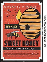 Apiary, beekeeping vintage poster with wild bees