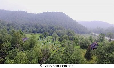 apiary in a forest on the mountain