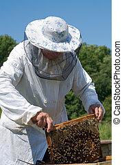 apicoltore, 45