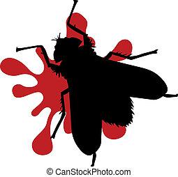 aplastado, mosca