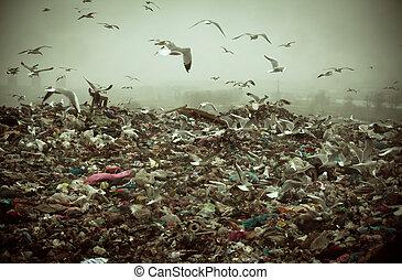 Apocalyptic scene of birds flying over the dump