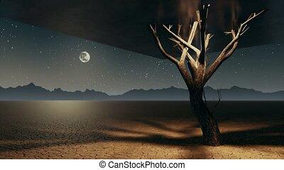 apocalyptique, solitaire, arbre, surréaliste, cube, nuit, désert