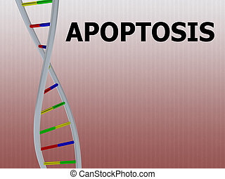 3D illustration of APOPTOSIS script with DNA double helix , isolated on red gradient.