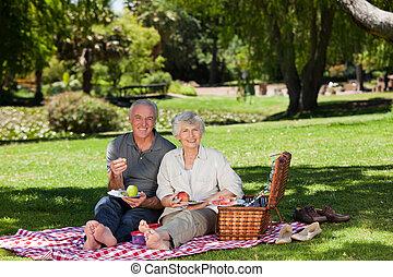 aposentado par, fazendo piquenique, em, a, g