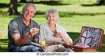 aposentado par, jardim, fazendo piquenique